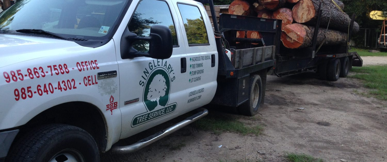 licensed tree removal and land clearing service
